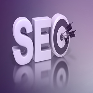 Search Engine Optimization ( SEO ) Services